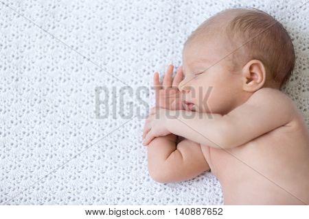 Sleeping Newborn Baby. Top View