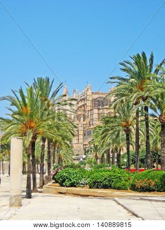 Cathedral La Seu with palms in front Palma de Mallorca Spain