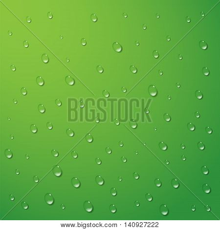 Water drops vector background. Rain condensation on a bright green surface. Weather forecast. Liquid droplets wet leaf texture. Light clean dew rainy day abstract illustration.