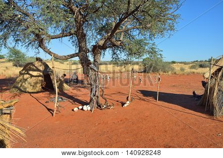 Bushmens village shown at morning time. The San people also known as Bushmen are members of various indigenous hunter-gatherer peoples of Southern Africa