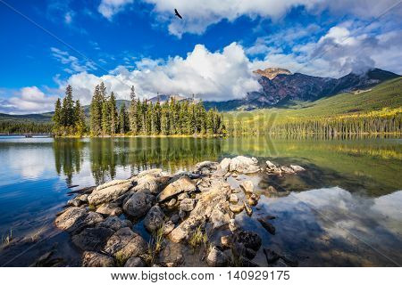 Transparent autumn morning in Jasper National Park, Canada. The woody small island in the Pyramid Lake