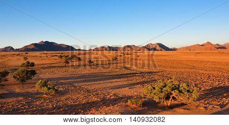 Beautiful namibian landscape at sunset Sossusvlei Namib Naukluft National Park Namibia