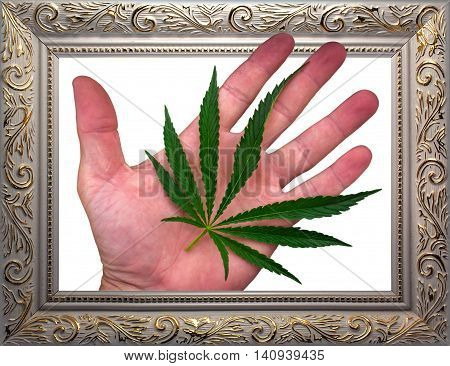 cannabis leaf on the palm. marijuana leaf in frame