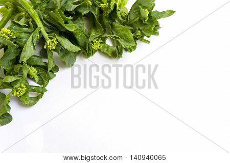 Chinese kale on Isolated background.Kale on whit background