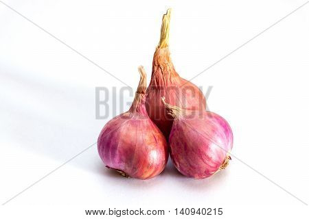 Shallot on the Isolated background,Red Onion on white background
