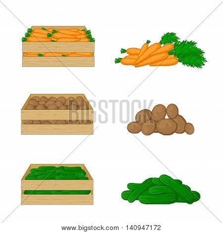 Vegetables in wooden boxes isolated on white background. Carrots, potatoes and cucumbers. Organic food illustration. Fresh vegetables from the farm.
