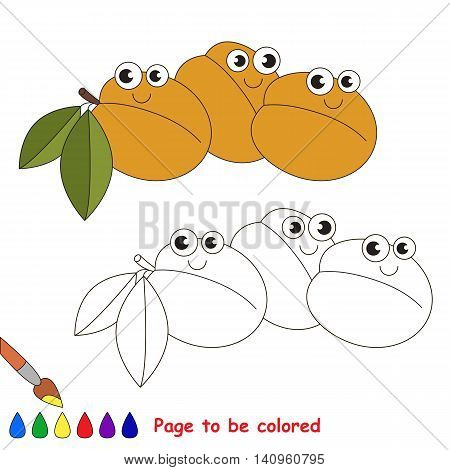 Apricots to be colored. Coloring book to educate kids. Learn colors. Visual educational game. Easy kid gaming and primary education. Simple level of difficulty. Coloring pages.
