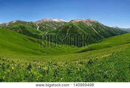 Grassy valley and snow-capped mountains in Georgia Svaneti