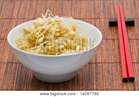 Soy Bean Sprouts