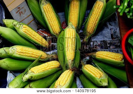 Hong Kong China - January 4 2008: Fresh sweet corn is displayed in a vendor's stand at the Canton Road outdoor market