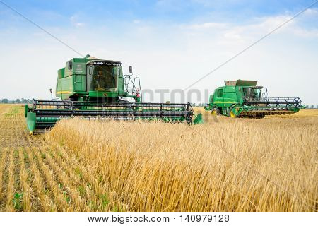 ZAPORIZHZHYA, UKRAINE - July 28, 2015: Two John Deere Combine Harvesters Harvesting Wheat in the Field.