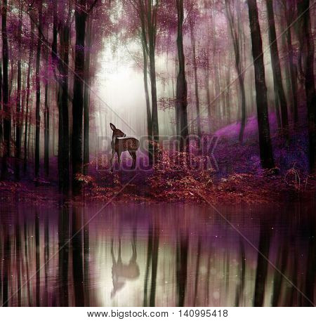 A little fawn in middle of a forest with water reflection. 3D rendering