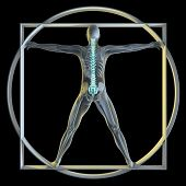 A 3d generated person posed like the famous Vitruvian Man (Symbol of health) rendered in a x-ray sty