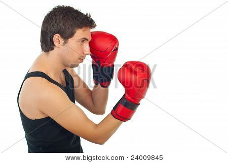 Profile Of Boxer Man Training