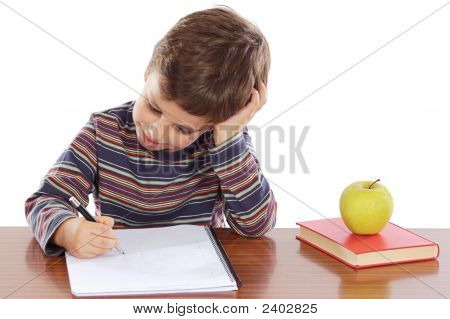 Adorable Boy Studying