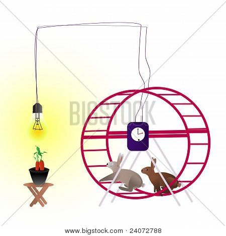 Rabbits in the running wheel with carrot