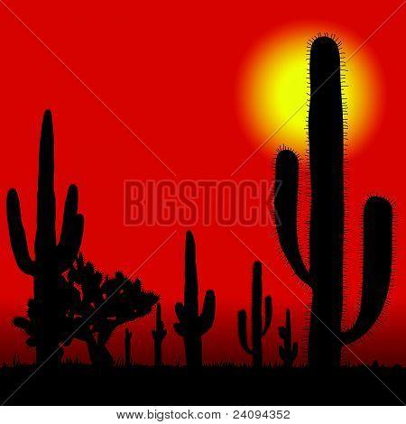 Cactus In Desert Vector Illustration