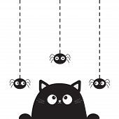 Black Cute Cat Kitten Face Head Looking On Hanging Spider. Dash Line. Paw Print. Cartoon Kitty Funny poster