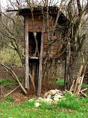 Hunter Box At The Edge Of The Wood Covered With Trees, Shelter For Hunters poster