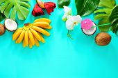 Summer Tropical Background With Fruits And Tropical Flowers And Leaves, Overhead View, Space For A T poster