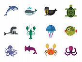 Sea Creatures Icons Set. Thirteen Vector Icons Of Dolphin, Turtle, Sea Lion And Other Sea Creatures poster