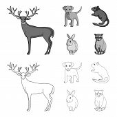 Puppy, Rodent, Rabbit And Other Animal Species.animals Set Collection Icons In Outline, Monochrome S poster