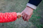 Grandmother Holding Grandchild Hand In Nature, Grandparenting poster