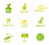 Vegetarian Food Symbol. Bio, Ecology, Organic Logos And Icons, Labels, Tags. Hand Drawn Bio Healthy  poster