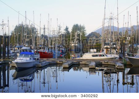 Marina At Uclelet Harbor On The West Coast