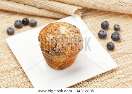 Fresh Homemade Blueberry Muffin