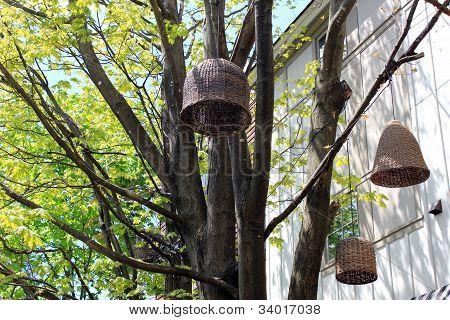 Pretty outdoor lanterns
