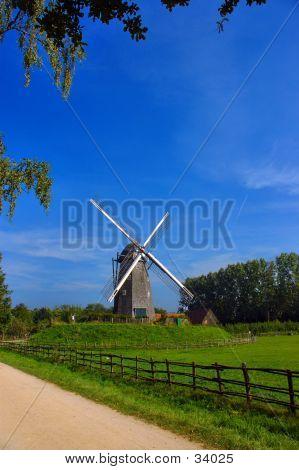 Windmill In Summer Sun.