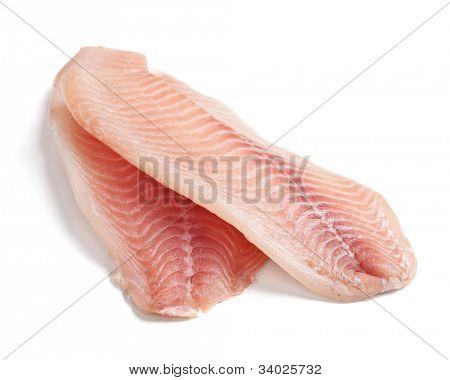 raw filleted tilapia on white