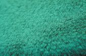 Artificial Fur. Color Of The Year 2020 Concept, Classic Turquoise Colored Trend For Your Design. Cop poster