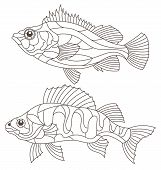 Set Of Contour Illustrations Of Stained Glass Windows With Perch, Sea And River Perch, Dark Contours poster