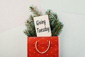 Giving Tuesday Concept. Minimal Flat Lay With Handwriting Text Giving Tuesday In Red Gift Bag And Fi poster