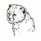 Cheetah Baby Tabby Cat T-shirt Print, Isolated Monochrome Design Vector, Hand Drawn Illustration. Li poster