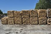 Firewood In Households poster