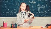 Observe Chemical Reactions. Formal Education School. Educational Experiment. Back To School. School  poster