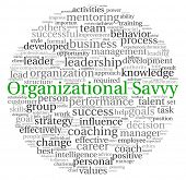 picture of change management  - Organizational Savvy concept in word tag cloud on white background - JPG