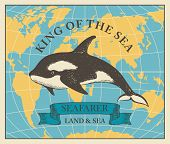 Vector Banner With Hand-drawn Killer Whale On The Background Of Map In Retro Style. Illustration On  poster
