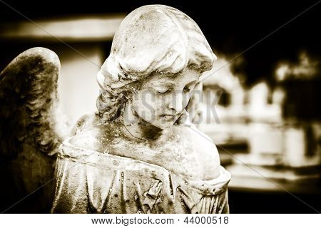 Vintage image of a sad angel on a cemetery with a diffused background