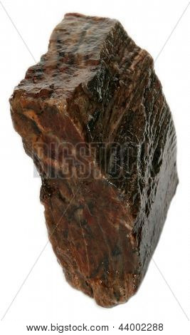 Petrified wood isolated on white