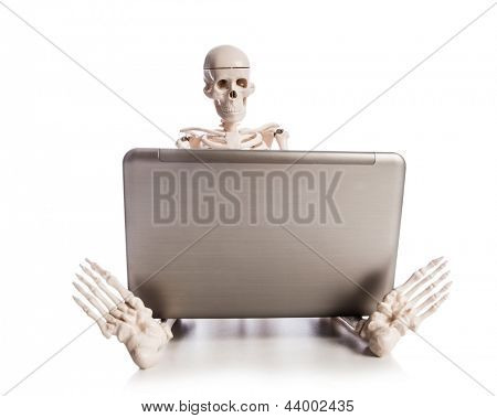 Skeleton working on laptop