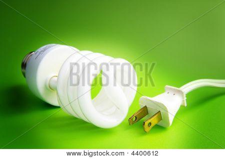Cord Bulb