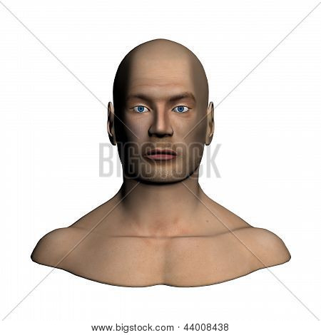 Human head - Frontal view
