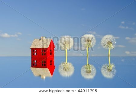 House Model On Mirror And Dandelion Seeds Blowball