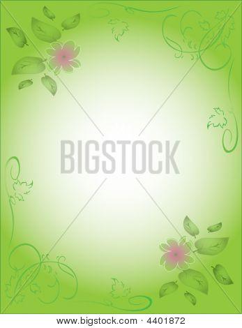 Green Postcard