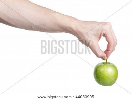 Adult Man Hand Holding Green Apple