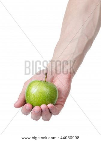 Adult Man Hand Holding Green Apple
